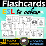 FLASHCARDS TO COLOUR ESL *GROWING BUNDLE*