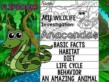 FLIP BOOKS Bundle : Anacondas - Rainforest Animals : Research, Report, Jungle