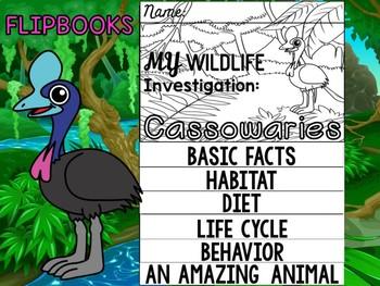 FLIP BOOK Bundle : Cassowaries - Rainforest Animals : Research, Report, Jungle