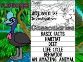 FLIP BOOK Set : Cassowaries - Rainforest Animals : Research, Report, Jungle