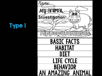 FLIP BOOK Bundle : Hippos - Zoo Animals : Research, Safari, African, Hippo