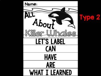 FLIP BOOK Bundle : Killer Whales - Sea Ocean Animals : Research, Report, Whale