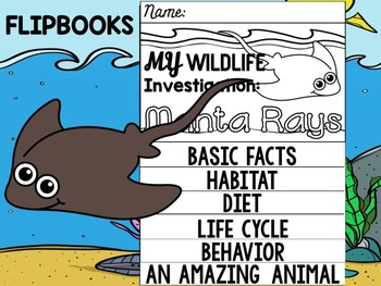 FLIP BOOK Bundle : Manta rays - Sea Ocean Animals : Research, Report, Mantas