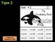 FLIP BOOK Bundle : Orcas - Sea Ocean Animals : Research, Report, Orca