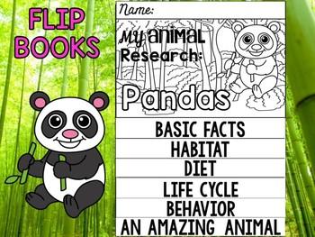 FLIP BOOK Bundle : Pandas - Zoo Animals : Research, China, mammals