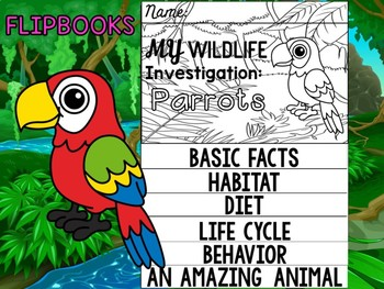 FLIP BOOK Bundle : Parrots - Rain forest Animals: Research, Animal Report