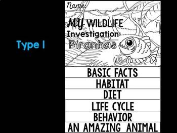 FLIP BOOK Bundle : Piranhas - Rain forest Animals: Research, Animal Report, Fish