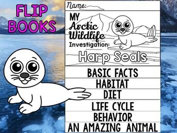 FLIP BOOK Set : Polar and Arctic Animal Research - Harp Seals