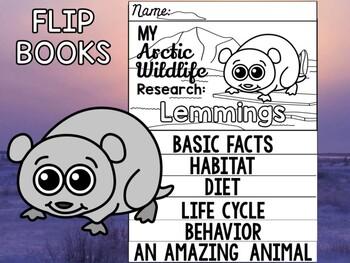 FLIP BOOK Set : Polar and Arctic Animal Research - Lemmings