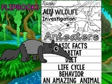 FLIPBOOK Bundle : Anteaters - Rainforest Animals : Research, Report, rain forest