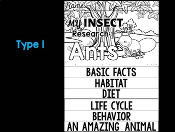 FLIPBOOK Bundle : Ants - Insects : Research, Report, Bugs, Life Cycle