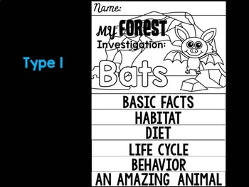 FLIPBOOK Bundle : Bats - Forest Animals : Research, Report, Woodland