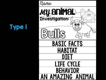 FLIPBOOK Bundle : Bulls - Farm Animals: Research, Report