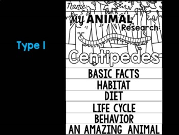 FLIPBOOK Bundle : Centipedes - Insects : Research, Report, Bugs, Life Cycle