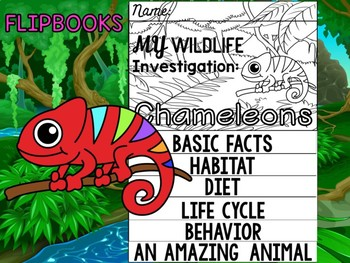 FLIPBOOK Bundle : Chameleons - Rainforest Animals: Research, Report, rain forest