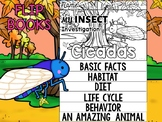 FLIP BOOK SET : Cicadas - Insects : Research, Report, Bugs
