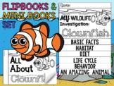 FLIPBOOK Bundle : Clownfish - Sea Ocean Animals : Research, Report, Writing