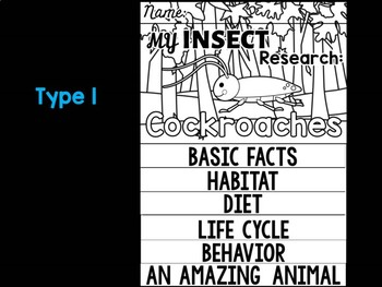 FLIP BOOK SET : Cockroaches - Insects : Research, Report, Bugs, Life Cycle