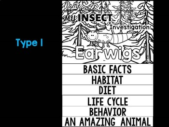 FLIPBOOK Bundle : Earwigs - Insects : Research, Report, Bugs, Life Cycle