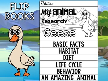 FLIPBOOK Bundle : Geese - Farm and Lake Animals : Research, Report