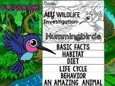 FLIPBOOK Bundle : Hummingbirds - Rainforest Animals: Research, Animal Report