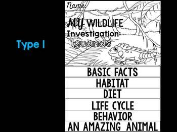 FLIPBOOK Bundle : Iguanas - Rainforest Animals: Research, Animal Report