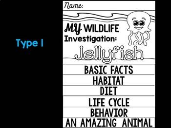 FLIPBOOK Bundle : Jellyfish - Sea Ocean Animals : Research, Report, Writing