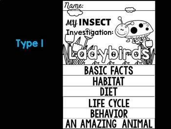 FLIPBOOK Bundle : Ladybirds - Insects : Research, Report, Bugs, Life Cycle