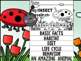 FLIP BOOK SET : Ladybirds - Insects : Research, Report, Bugs, Life Cycle