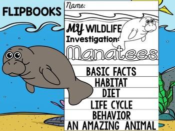 FLIPBOOK Bundle : Manatees - Sea Ocean Animals : Research, Report, Sea Cows