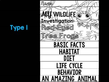 FLIPBOOK Bundle : Red Eyed Tree Frogs - Rain forest Animals: Research, Report