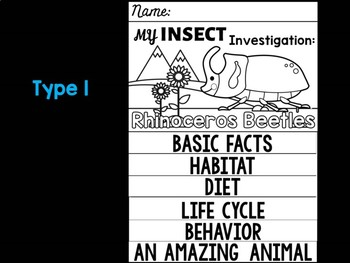 FLIPBOOK Bundle : Rhinoceros Beetles - Insects : Research, Report, Unit Study