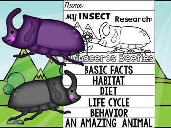FLIP BOOK SET : Rhinoceros Beetles - Insects : Research, Report, Unit Study