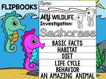 FLIPBOOK Bundle : Seahorses - Sea Ocean Animals : Research, Report, Animal