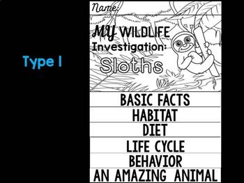 FLIPBOOK Bundle : Sloths - Rain forest Animals: Research, Report, Sloth