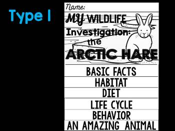 FLIPBOOKS : Arctic Hare -  Polar Animals : Research, Writing, and Vocabulary