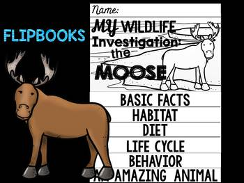 FLIPBOOKS : Moose-  Polar Animals : Research, Writing, and Vocabulary