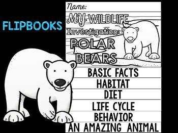 FLIP BOOK Bundle : Polar Bears - Arctic Polar Animals : Research, Writing, Vocab