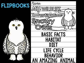 FLIP BOOK Bundle : Snowy Owls -  Polar Animals : Research, Writing, and Vocab