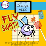 FLY SWAT!! An Ordered Pairs, Coordinate Grid Game