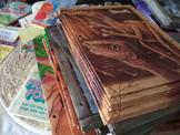 Dinosaur & Insect Folders (Set of 76)