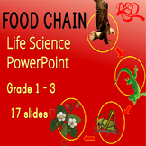 Free Food Chains Powerpoint ❘ Life Science ❘ Leveled Reading