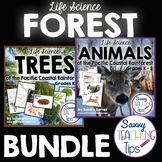 FOREST - Animals and Trees BUNDLE