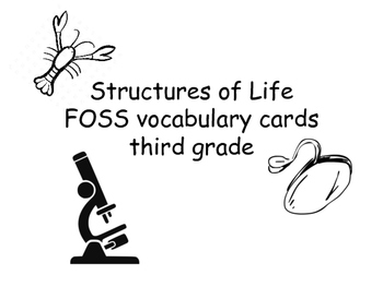 FOSS/AMSTI 3rd grade vocabulary word wall cards - Structur