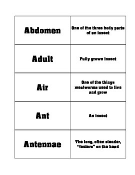 FOSS Insects Vocabulary Cards