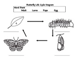 FOSS Notebook Resources for Insect and Rocks Units