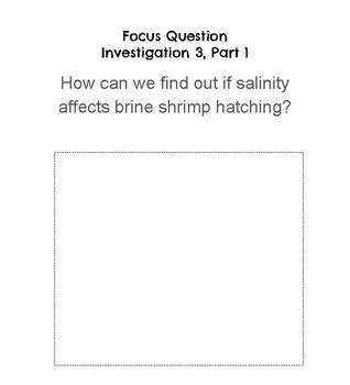 FOSS Science Environment Digital Interactive Notebook Investigation 3