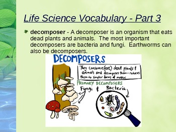 FOSS Science - Environments - Fourth Grade Unit