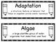 FOSS vocabulary - BUNDLE - 5th grade Science
