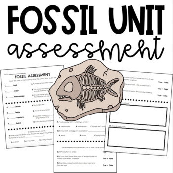 FOSSIL ASSESSMENT
